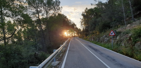 Sunlight shining through the trees on the road to the top of Coll de Rates.